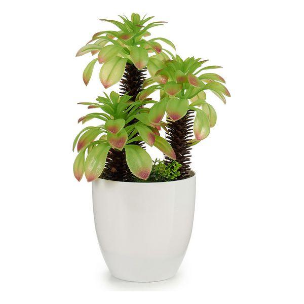 Planta Decorativa Branca (17 x 31 x 17 cm) Branco