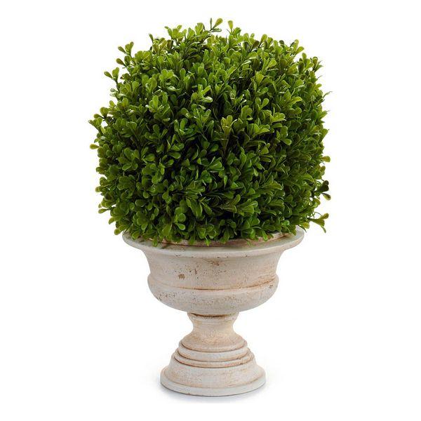 Planta Decorativa (33 x 37 x 30 cm)