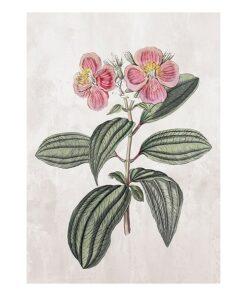 Pintura Flower (105 x 75 x 4 cm)