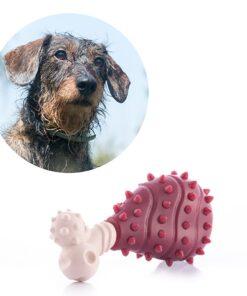 Brinquedo para Cães Meat
