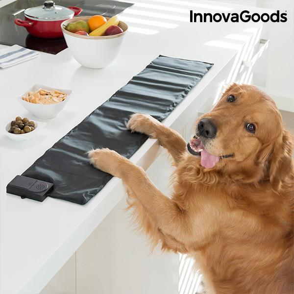 Tapete Educativo para Animais Domésticos InnovaGoods