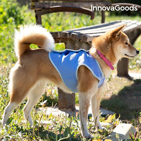 Colete Refrescante para Cães Pequenos InnovaGoods - S