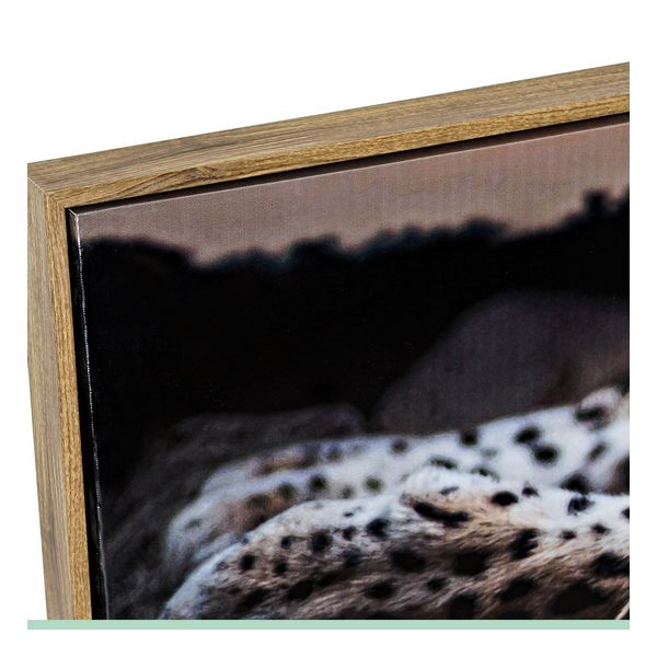 Pintura Dekodonia animais Multicolor (2 pcs) (120 x 2 x 40 cm)